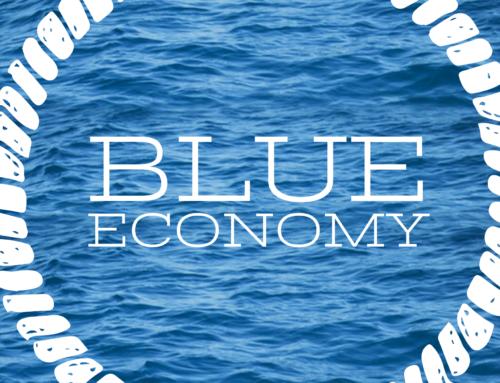 Blue Economy e strategie di sviluppo.